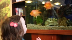 Cute little girl looks at fishes in aquarium in room Stock Footage