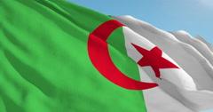 Beautiful looping flag blowing in wind: Algeria - stock footage