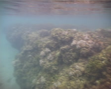 Ocean scenery exit to Dive Kadavu beach and tropical island, on very shallow Stock Footage