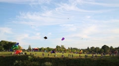 Flying kites and people on meadow at summer evening Stock Footage