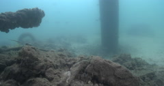 Ocean scenery pylon under a floating pontoon, on river bottom with debris Stock Footage