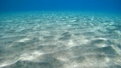 Underwater, the sunlight on the sandy bottom of the sea Stock Footage