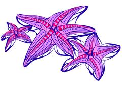 starfish illustration - stock illustration