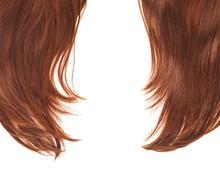 Hair fragment over the white - stock photo