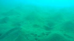 Sand hills at the bottom of the sea, Red sea, Marsa Alam, Abu Dabab, Egypt Stock Footage
