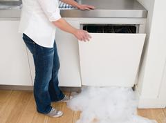 Woman opening a leaking dishwasher Stock Photos