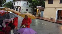 Alms giving ceremony of distributing food to buddhist monks in Luang Prabang - stock footage