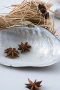 Star anise seashell and hay Stock Photos
