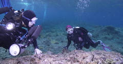 Housed SLR photographer hiding on very shallow reef surge zone with Red-spotted Stock Footage