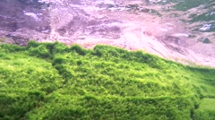 Rocky bottom overgrown with algae, Siberia, the Russian Federation, Eurasia Stock Footage
