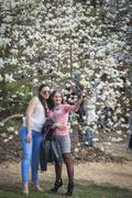 People enjoy magnolia blossoms in Botanical Garden in Kyiv - stock photo