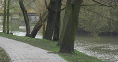 Paved Footpath in a City Park Near the River Spring Car on a Bridge Fresh Green Stock Footage