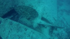Propeller wreck SS Thistlegorm, Red Sea, Sharm el Sheikh, Egypt, Sinai Stock Footage