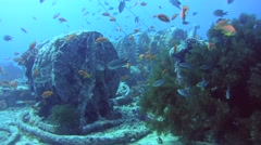 "Winch mechanism on shipwreck ""SS Thistlegorm"", Red sea, Egypt, Stock Footage"