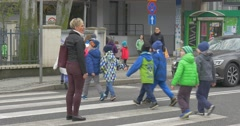 Pupils of Elementary Grades Pass Through a Road Stock Footage