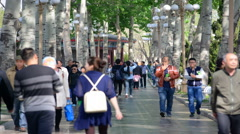 Time lapse Crowd of asian people walking in park. Stock Footage