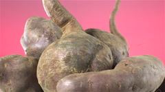 Sweet Potatoes isolated rotating on red/pink background Stock Footage