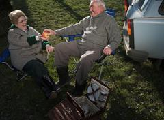 Senior couple having picnic by car Stock Photos