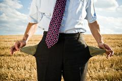 Turned-out pockets in wheat field. Stock Photos