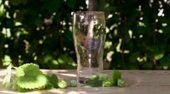 Glass of beer with hops poured, jet, foam on the wooden, sun, garden, street Stock Footage