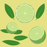 Lime and leaves Stock Illustration