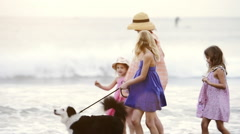 Single mom and 3 daughters with a border collie walking along the beachfront  Stock Footage