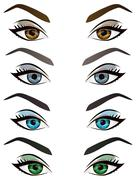 Set of realistic cartoon vector female eyes and eyebrows Stock Illustration