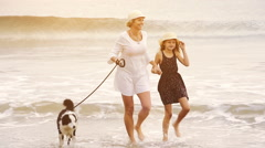 Mother and daughter with border collie dog walking on beach in early morning Stock Footage