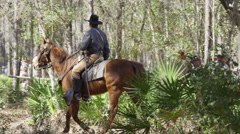 CIvil War Collection, Cavalry Soldier in the wood. Stock Footage