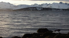 blue waves on fjord, snowy mountain landscape and floating seaweed - stock footage