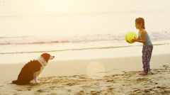 Young girl throwing a ball playing catch with a border collie dog. Stock Footage