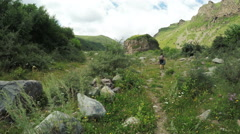 Path in alpine meadows Stock Footage