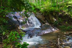 Natural Waterfall in a Tropical, Wooded Nature Area Stock Photos