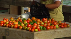 Pull from tomatoes to harbour side market in Vava'u, people or person in shot, Stock Footage