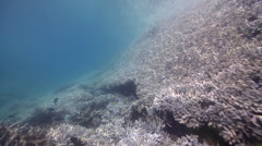 Ocean scenery fast drift over lagoon entrance channel, coral growing almost to Stock Footage