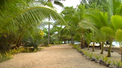Beachfront resort garden, HD, UP15538 Stock Footage
