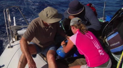 Divemaster helping tourist set up dive gear, people or person in shot, HD, Stock Footage