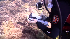 Scientific diver swimming on shallow coral reef in Australia, HD, UP26680 Stock Footage