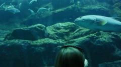 Girl and boy looking at fish tank at the aquarium Stock Footage