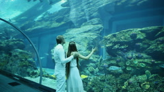 Girl and boy looking at fish tank at the aquarium - stock footage