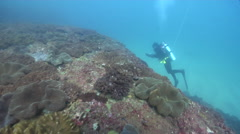 Scientific diver on rocky reef in Australia, HD, UP26578 Stock Footage