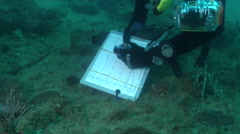 Ocean scenery researcher writing data on a slate, silty inshore reef, poor Stock Footage