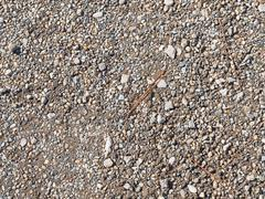 old granite rubble - stock photo