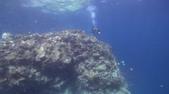 Male model scuba diver hovering on shallow coral reef in Fiji Islands, HD, Stock Footage
