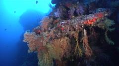 Ocean scenery on deep wall, HD, UP16787 Stock Footage