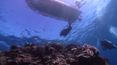 Group of scuba divers ascending on very shallow reef and surface in Fiji Stock Footage