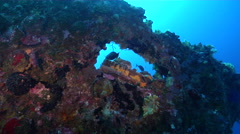 Ocean scenery colourful background around scupper, on wreckage, HD, UP27564 - stock footage
