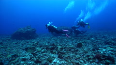 Group of scuba divers swimming on deep coral rubble in Solomon Islands, HD, Stock Footage