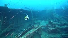 Ocean scenery World War II, WW2 Japanese freighter, on wreckage, HD, UP26924 - stock footage
