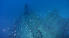 Ocean scenery World War II, WW2 Japanese freighter, on wreckage, HD, UP26899 Stock Footage
